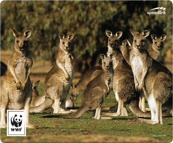 SPEEDLINK TERRA WWF Mousepad, Känguru